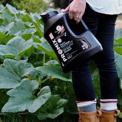 Organic Fertilizer – The Best Natural Options for Organic Gardening