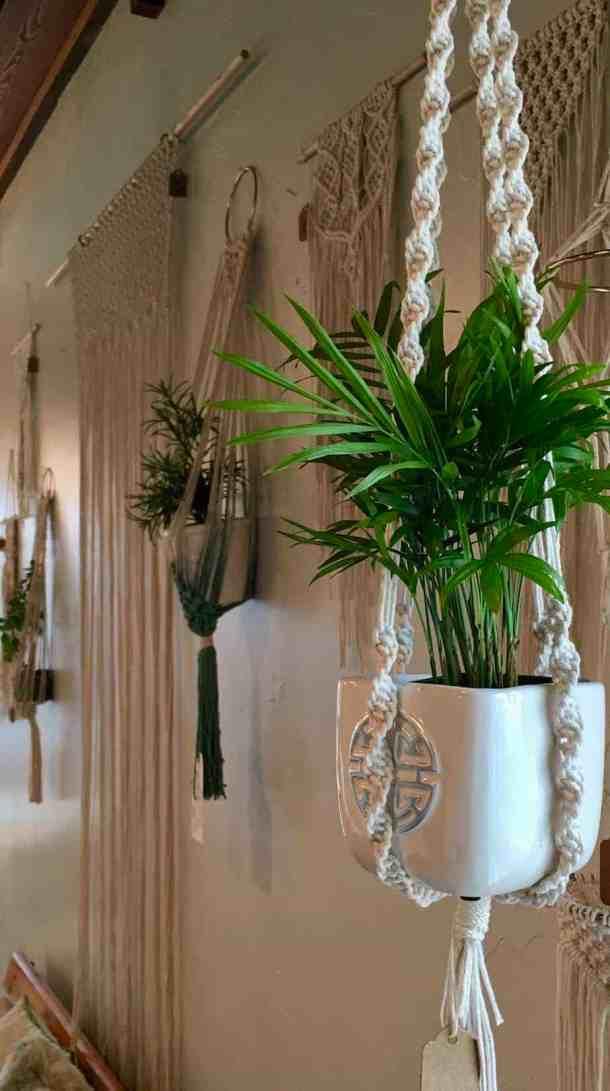 hanging plants in macrame plant hanger options