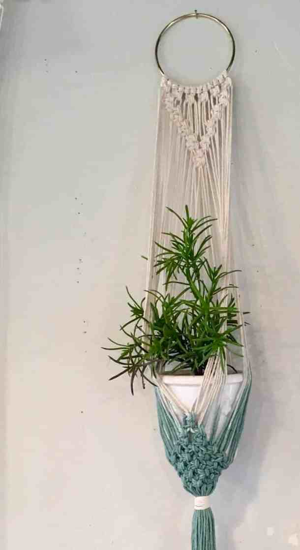 Hanging plant in macrame plant holder - white and blue dip dyed hanging planter