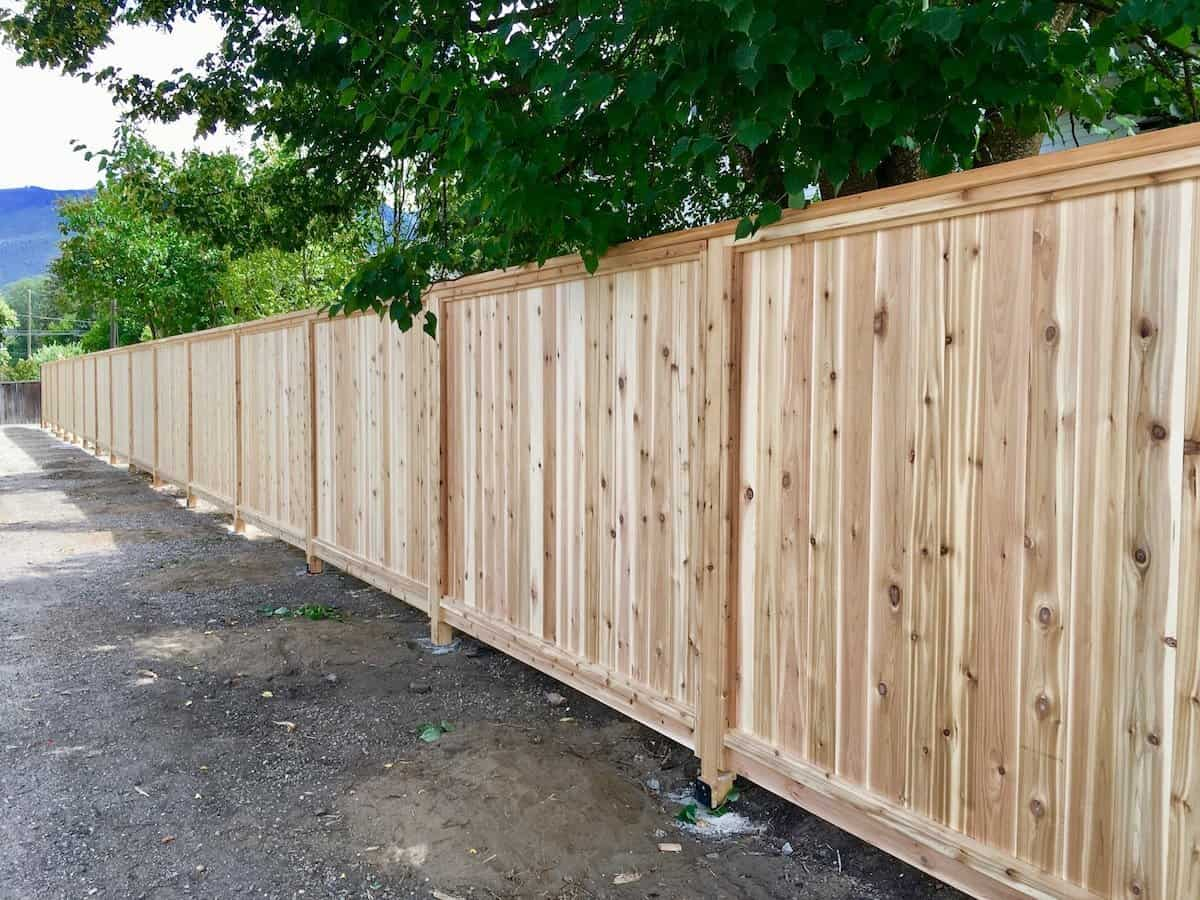 outstanding wooden fence panels cork