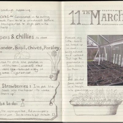 How a Homeowner Can Use a Garden Journal