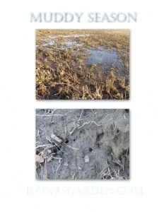 mud time in Ohio
