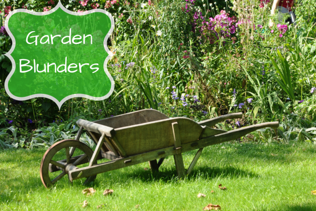 This Years Garden Blunders