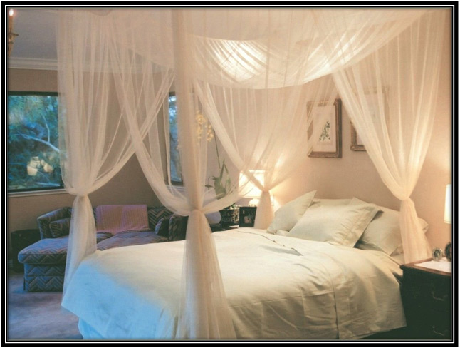 Canopy Bed Nets Bedroom Design Ideas Home Decor Ideas