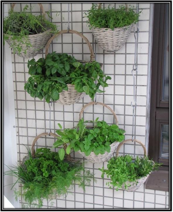 Shape-type of garden - Home Decor Ideas