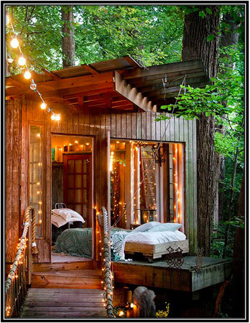 Sheshed Into A Tree House Shesheds Decor Ideas