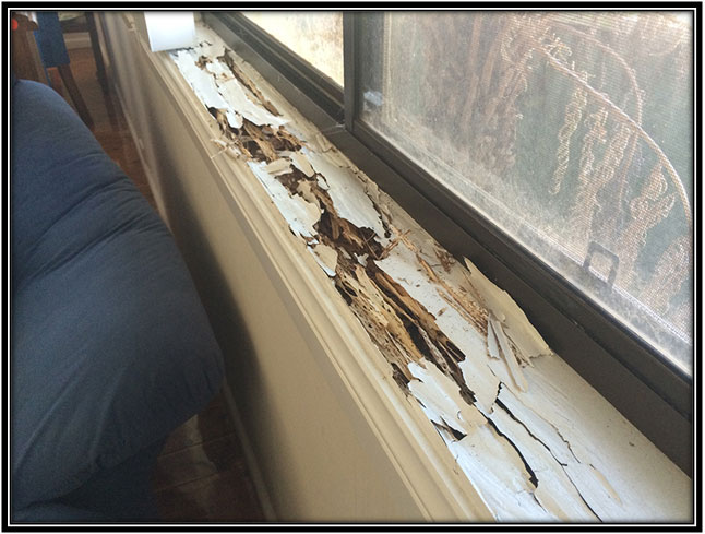 Rotting, warped or damaged window frames