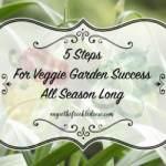 5 Steps For Veggie Garden Success: Homestead Blog Hop #28