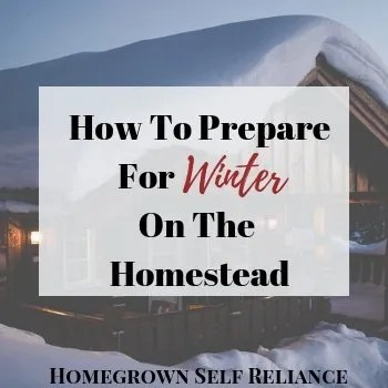 Snowy cabin - How to prepare for winter on the homestead