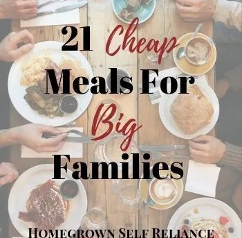 21 Cheap Meals For Big Families