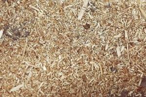 Winter chicken care - Wood chips for deep litter bedding
