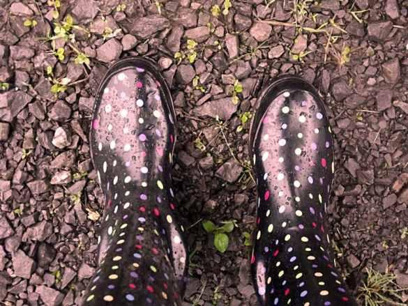 Rain Boots - After the Rain