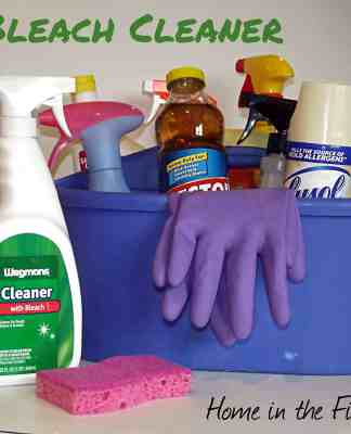 DIY Beach Cleaner- Home in the Finger Lakes