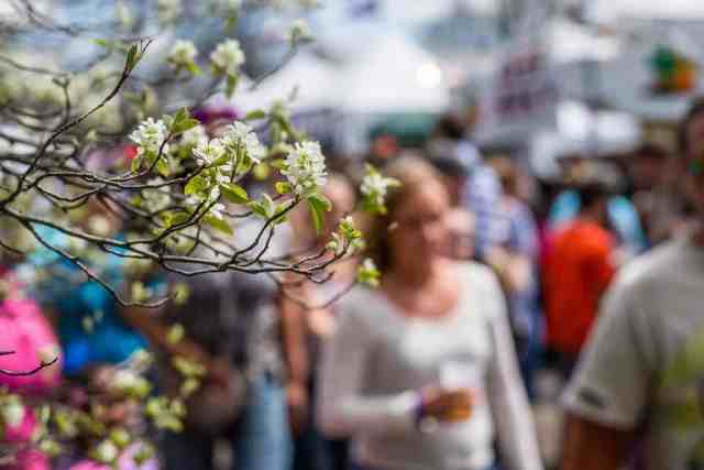 10 upstate new york festivals to add to your calendar for 2017 - Rochester home and garden show 2017 ...