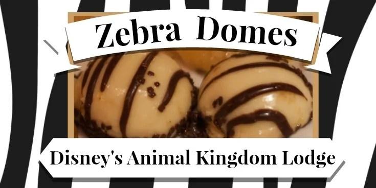 Zebra Domes 21