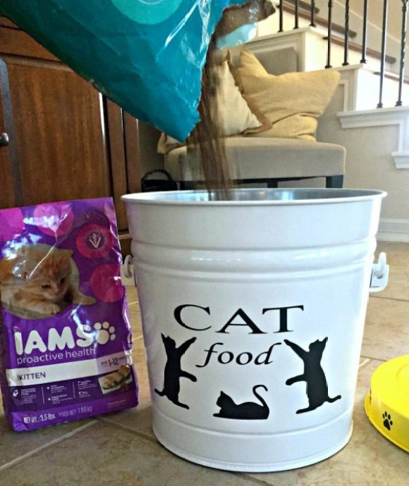 pouring-iams-cat-food