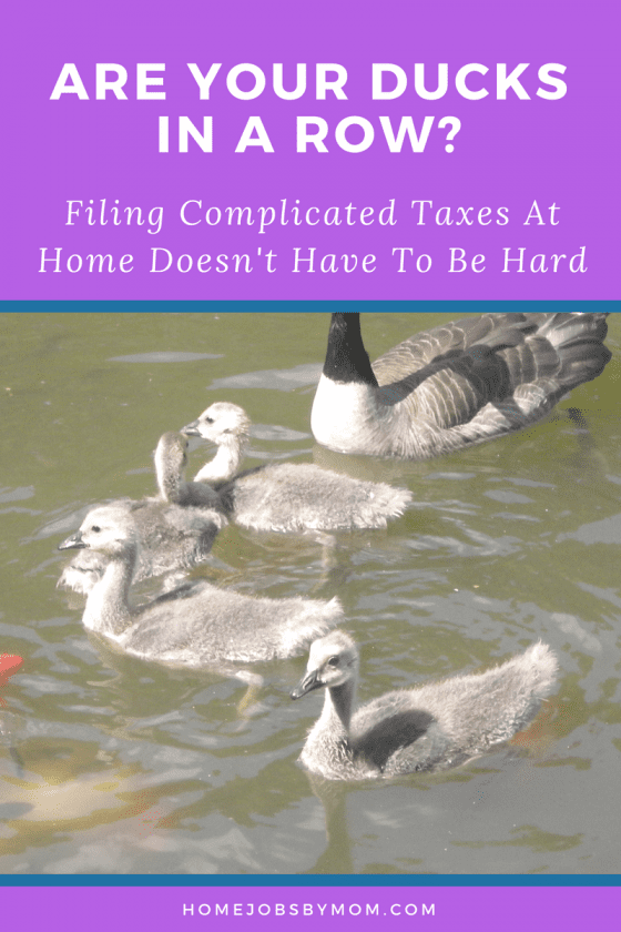 Are Your Ducks In A Row? Filing Complicated Taxes At Home Doesn't Have To Be Hard