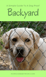 A Simple Guide To A Dog Proof Backyard