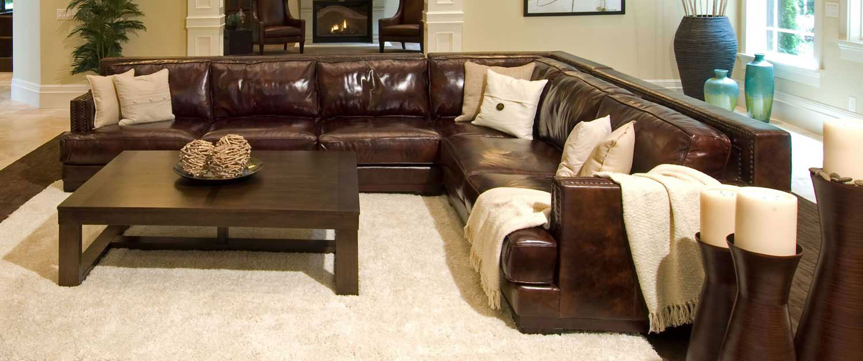ELEMENTS Fine Home Furnishings Easton Top Grain Leather