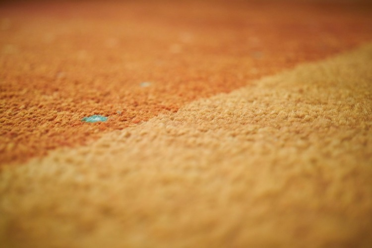 Mold Cleaning How To Get Mold Out Of Carpet Homelization