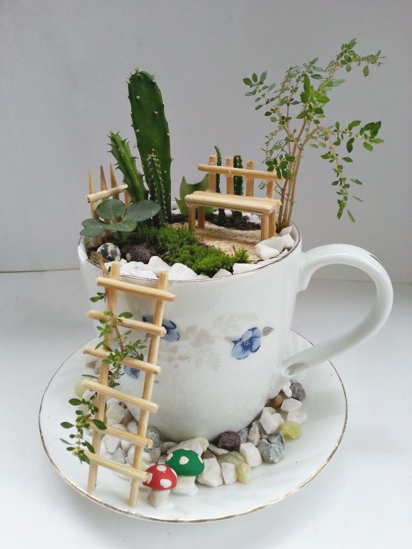 Perfect Fairy Home in a Cup