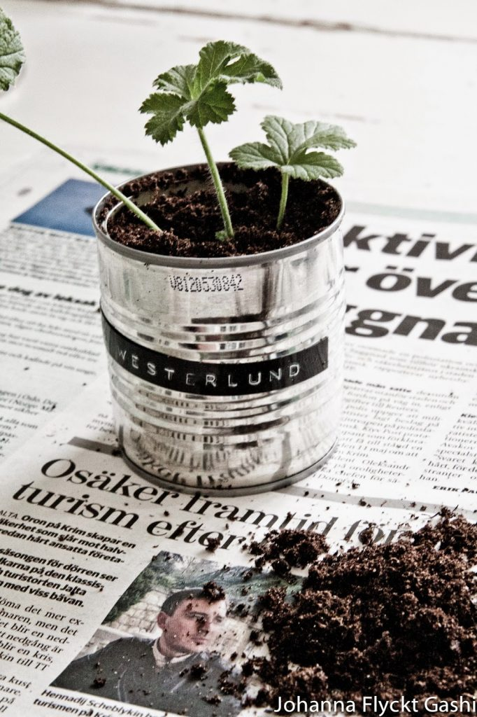 Plant Brand