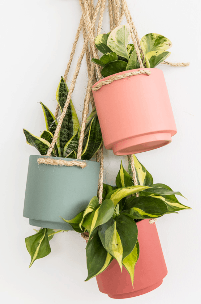 Easy $5 Hanging Planter