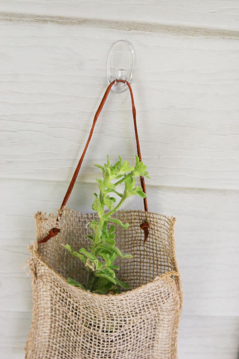 No sew hanging planters. Such a quick and easy way to spruce up an outdoor space!