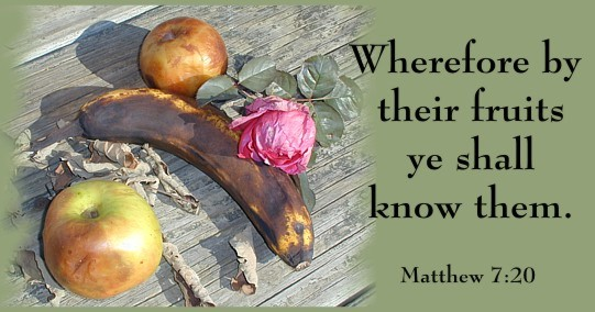 Image result for by their fruits ye shall know them images