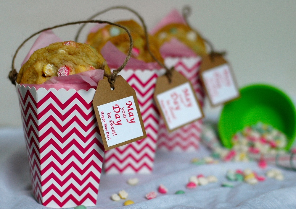 DIY Popcorn Box May Day Baskets with Free Printable Gift Tags