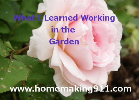 Working in the garden