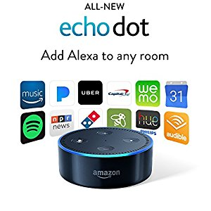 Uses for the Echo Dot