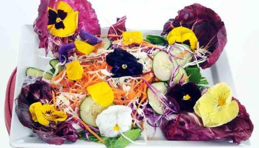 Um festival gastronômico para comer flores