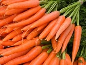 carrot, Alzheimer