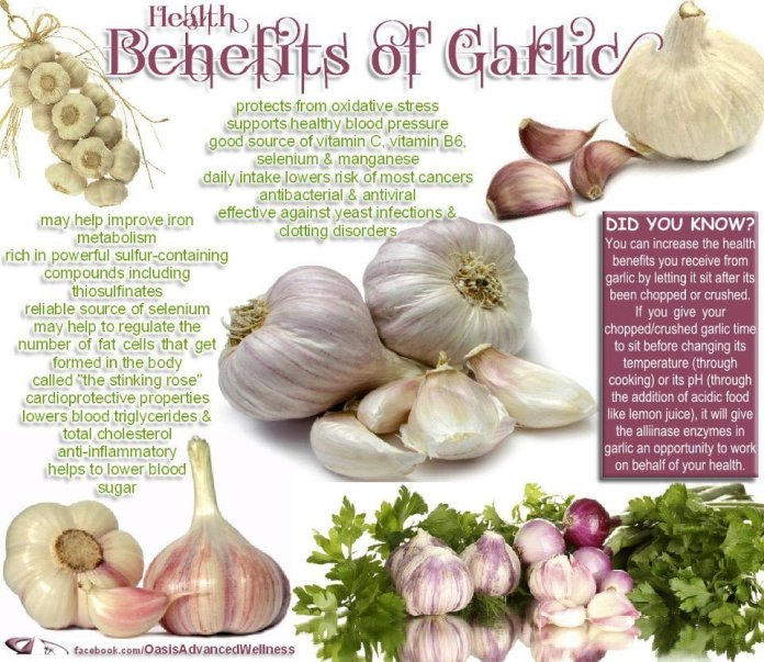 garlic for cholesterol
