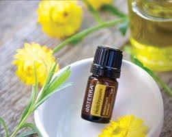 """helichrysum huile essentielle avantages pour la santé """"title ="""" helichrysum huile essentielle avantages pour la santé"""