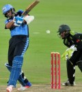 Titans vs Cape Cobras Preview