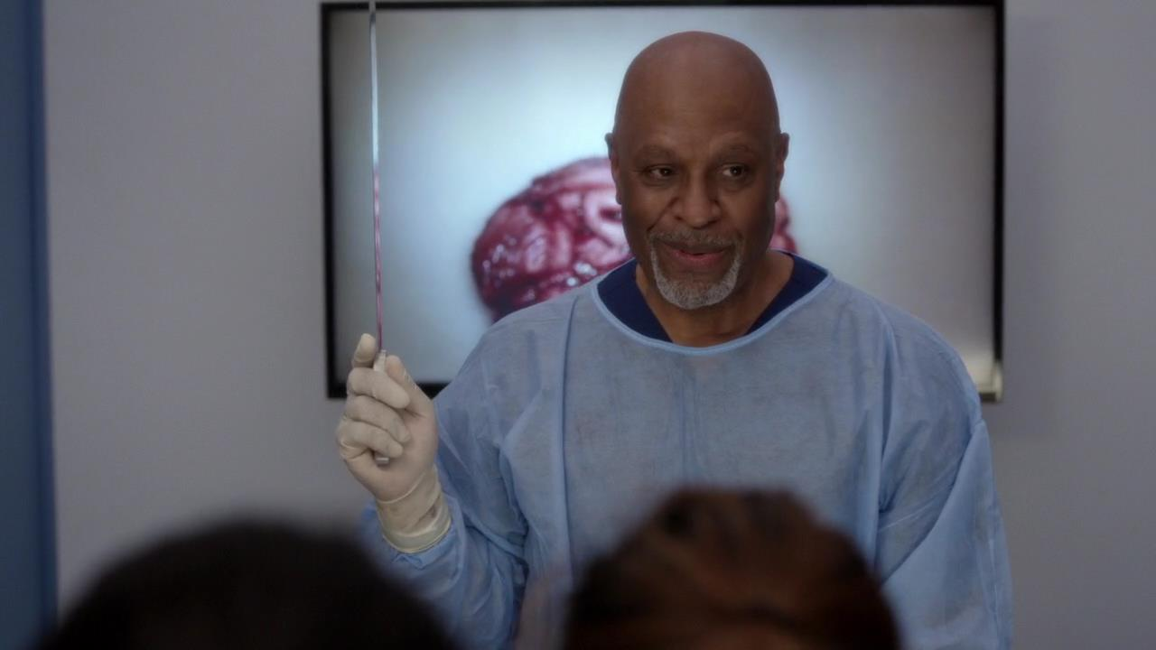 Recap/Review: Grey\'s Anatomy – S12E04 – Old Time Rock and Roll ...