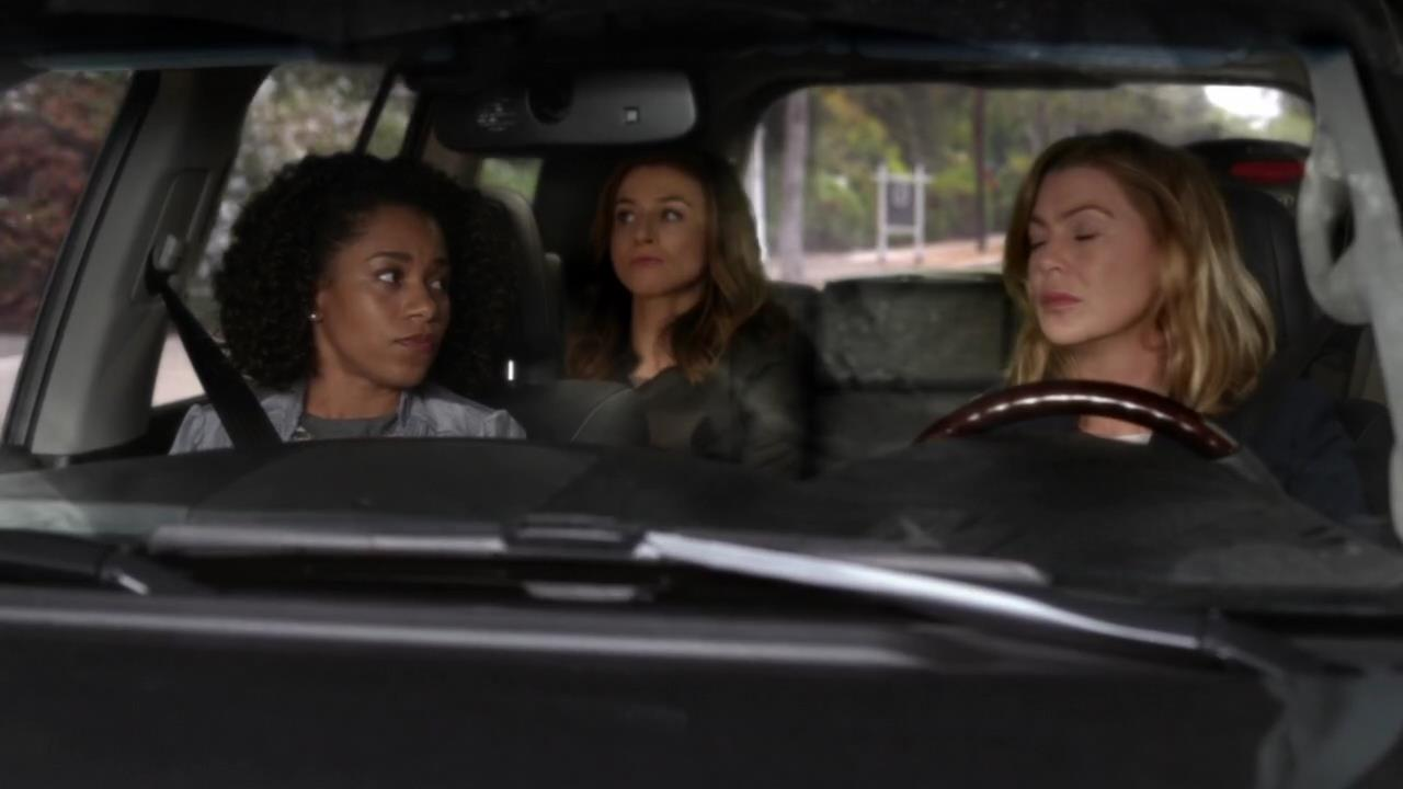 Recap/review: Grey\'s Anatomy – S12E06 – The Me Nobody Knows – Quite ...
