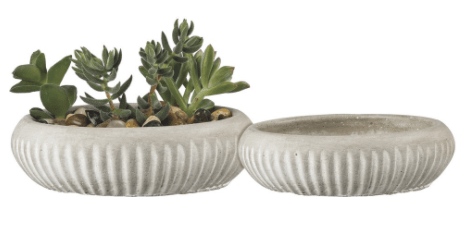 Shallow Cement Planters