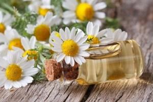 chamomile-oil
