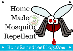 11 Homemade Mosquito Repellent To Keep Them Away