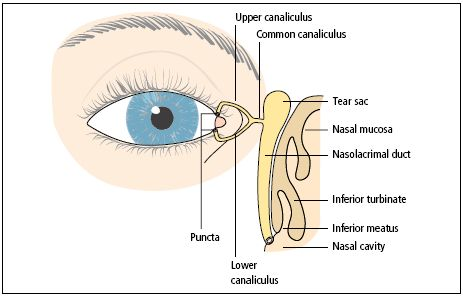 Dilation-Probing-and-Irrigation-Technique