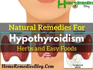 9 Hypothyroidism Natural Treatments to Control The Symptoms
