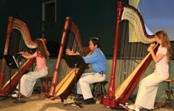 mally-family-harp