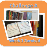 Challenge A - Week 1 Survival