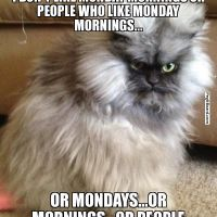 Bi-Polar Mondays (AKA Manic Mondays)