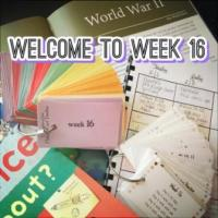 CC Cycle 2 Week 16 UPDATED 5th Edition Lesson Plans