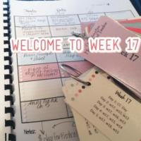 CC Cycle 2 Week 17 UPDATED 5th Edition Lesson Plans