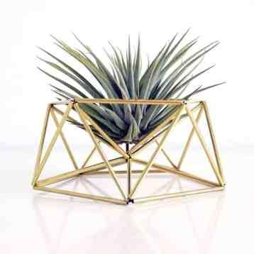 Hippe diy table planter Mars van Draadzaken! Leg er een mooi luchtplantje in en fleur jouw huis helemaal op, mooi hè!? | www.homeseeds.nl | #draadzaken #mars #woonaccessoire #botanisch